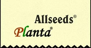 Allseeds Planta